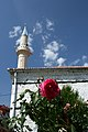Mosque and Red Rose in Peja.jpg