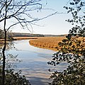 Mount Landing Creek looking upstream, Hutchinson Reserve, Tappahannock, Virginia - panoramio.jpg