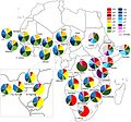MtDNA Haplogroup composition of sub-Saharan African countries.jpg