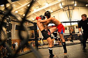 English: Muay thai, knees in clinch.