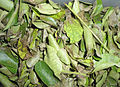 Murraya koenigii dried curry leaf.JPG