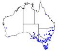 Myrmecia pilosula distribution map.png