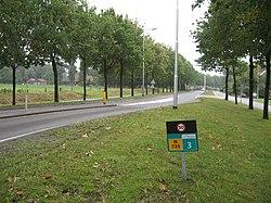 N735-Bentheimerstraat-De Lutte.jpg
