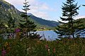 Nad Morskim Okiem, Zakopane - panoramio.jpg