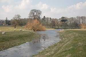Little Stour - The Nailbourne near Bishopsbourne on 25 March 2007.
