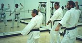 Nam Suk Lee training with students Jon Wiedenman and George Fullerton