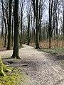 Nature reserve Hamburg.jpg