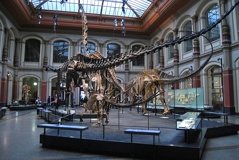 File:Naturkundemuseum berlin apr2009.jpg