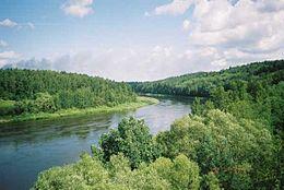 Il fiume nemunas vicino alytus