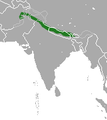 Nepal Gray Langur area.png