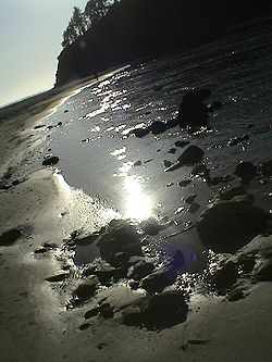 Neskowin Beach, near Proposal Rock
