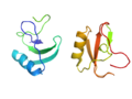 Neurotoxin rendering.png