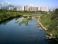 Ng Tung River 0806 (2).jpg