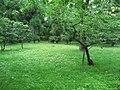 Nijojocho, Nakagyo Ward, Kyoto, Kyoto Prefecture 604-8301, Japan - panoramio (3).jpg