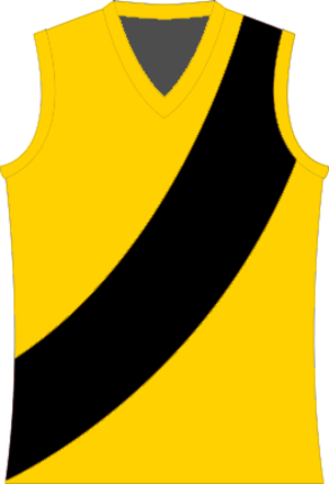 Western Border Football League - Image: North Gambier Tigers Football Jumper
