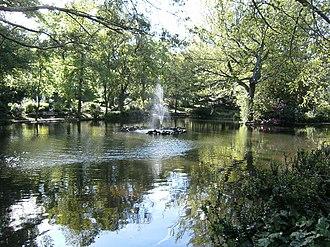 The Arboretum, Nottingham - The lake in Nottingham's arboretum