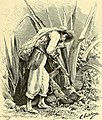 Nouvelle géographie universelle - la terre et les hommes (1876) (14774339661).jpg
