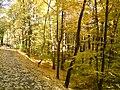 Octombrie 2010 - panoramio (1).jpg