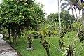 Orchid Garden Bali Indonesia - panoramio (30).jpg