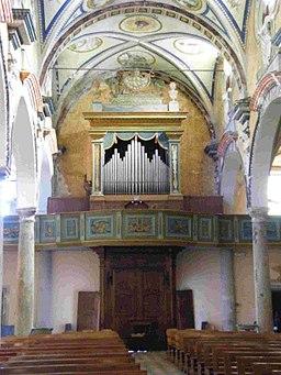 Organo del Trompone