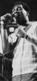 Otis Redding (3).png