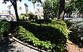 PALMA de MALLORCA, AB-012.jpg