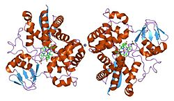 Styrol-Monooxygenase (Sulfolobus acidocaldarius)