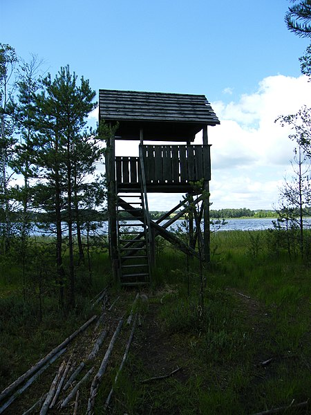 A waterfowl observation platform by Lipno Lake in the Wdzydze Landscape Park