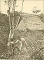 Panama and the canal in picture and prose (1913) (14596825708).jpg
