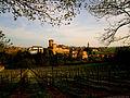 Panorama di Levizzano Rangone.jpg