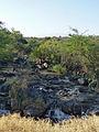 Parc national d'Awash-Ethiopie (2).jpg