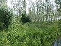 Park van de Oostelijke Jeker (2) - 206259 - onroerenderfgoed.jpg