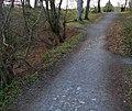 Path, Clandeboye (1) - geograph.org.uk - 754803.jpg