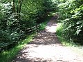 Path in Epping Forest - geograph.org.uk - 2523496.jpg