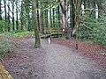 Path near Garries Park - geograph.org.uk - 1373270.jpg