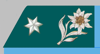 Rank insignia of the Austro-Hungarian armed forces - with celluloid distinction star and Edelweiss badge