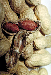 Peanut shells, with one split open revealing two seeds with their brown seed coats