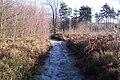 Permissive Path towards Decoy Cottage - geograph.org.uk - 1610317.jpg