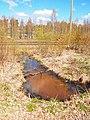 Petäjävesi - ditch.jpg