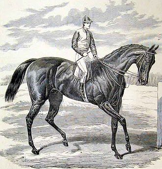 Petrarch (horse) - Petrarch, from the Illustrated London News, September 1876