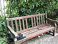 Photograph of a bench (OpenBenches 289).jpg