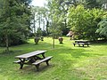 Picnic area within the pines area at RHS Wisley - geograph.org.uk - 847109.jpg