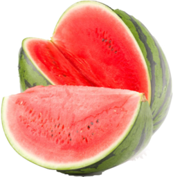 Piece of watermelon.png