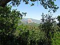 Pietra Cappa (Parco Nazionale dell'Aspromonte) - San Luca (Reggio Calabria) - Italy - 10 May 2009 - (4).jpg