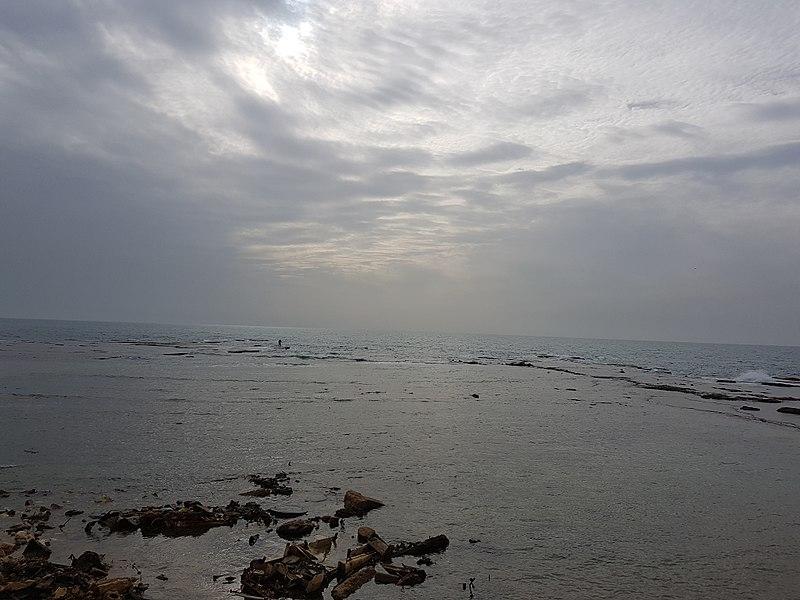 הים של יפו