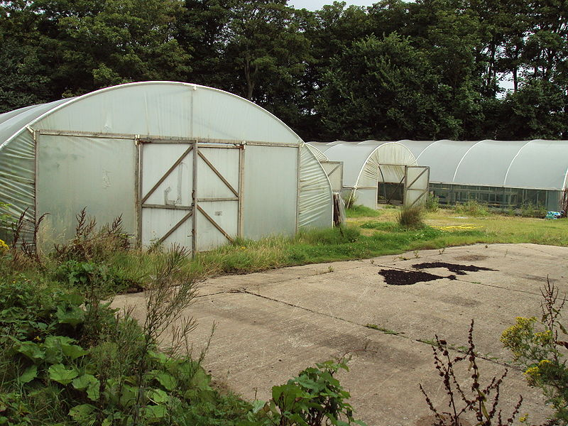 Fichier:Plastic tunnel greenhouses, Hesketh Park.JPG