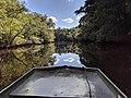 Pocomoke River.jpg