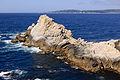 Point Lobos September 2012 008.jpg
