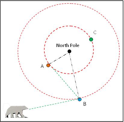 Polar bears near the Pole