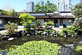 Pond - Dr. Sun Yat-Sen Classical Chinese Garden - Vancouver, Canada - DSC09802.JPG